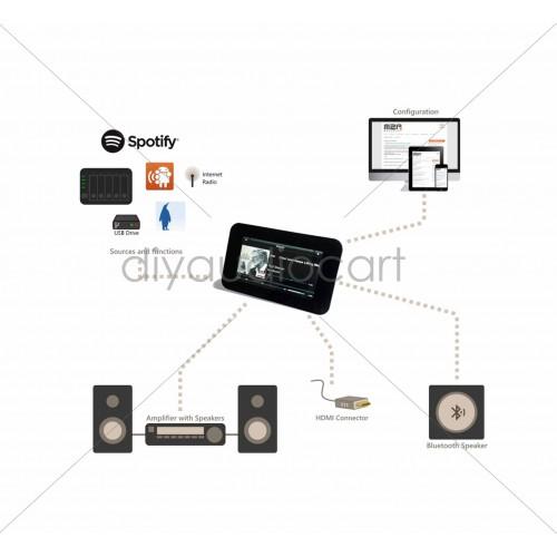 Allo - Boss V1 2 Player, Network Music Player