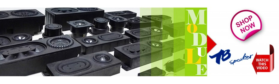 Tang Band Speaker Modules